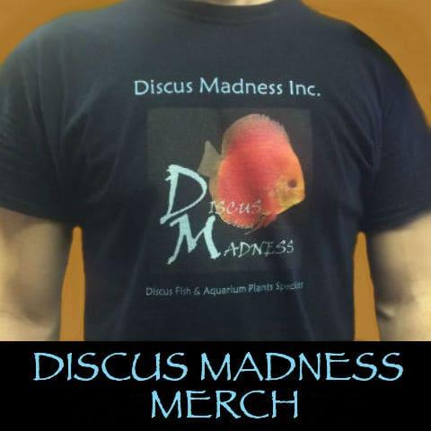 DM Shirts